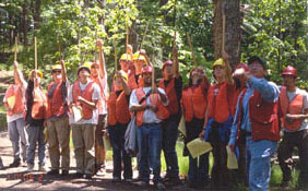 Forestry students measuring trees